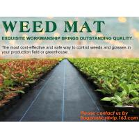 Quality China Supplier Anti Weed Mat Weed Control Mat 100gsm PP Landscape Fabric Weed Barrier,Weed block mat keep damp and tempe wholesale