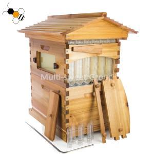 Quality Wooden Beekeeping 18mm Honey Bee Flow Bee Hive wholesale