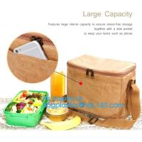 Quality Custom Eco friendly tyvek Lunch bag Insulated Cooler bag,tyvek kraft paper insulated aluminum foil lunch box bag with sn wholesale