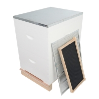 Buy cheap Plastic Frame 20mm Thick Pine Beekeeping Beehive With Foundation from wholesalers