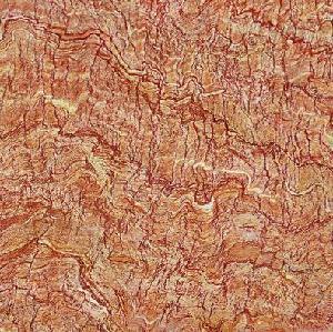 Quality Rustic Floor Tiles  (FH-TR06) wholesale