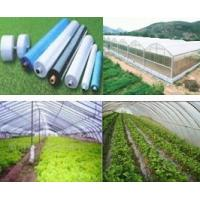 Quality AGRICULTURE FILM wholesale