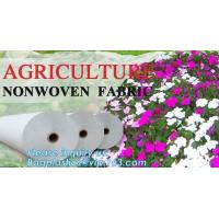 Quality Garden Plant Fruit Vegetable Warm Protective Bag Plant Cover Drawstring Shrub Non-woven Fabric Sapling Frost Cover wholesale