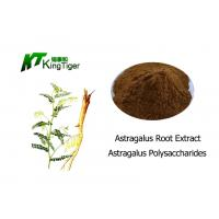 Quality High Purity Astragalus Polysaccharides Prevention Of Oxidative Stress wholesale