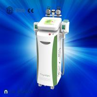Quality Fat dissolving cryolipolysis machine / vacuum slimming beauty machine with Bottom Price wholesale