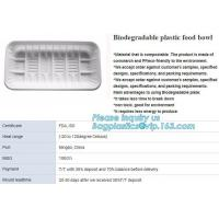 Quality blister packaging tray, rectangular plastic food tray, CornStarch PLA cement tray wholesale