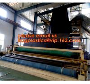 Quality 1mm hdpe geomembrane indoor fish farming tank 1.0mm geomembrane,2mm high density polyethylene waterproof membrane BAGEAS wholesale