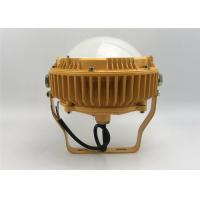 Quality 40W - 80W Explosion Proof LED Security Flood Light AC85 - 260V IP65 Protection wholesale