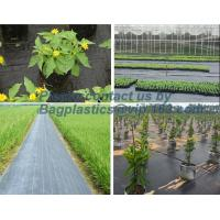 Quality Water management weeb control pavement preservation courtyard beautify anti insect anti mold seedbed protection vegetati wholesale