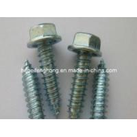Quality Hex Washer Head Self Drilling Screw/Self Tapping Screw (DIN7504) wholesale