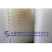 Quality Hexangular Honeycomb Packing wholesale