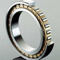 Quality Single Row Full Complement Cylindrical Roller Bearings ID over 150mm wholesale