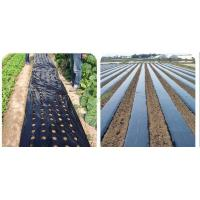 Quality Pe mulching film with hole wholesale