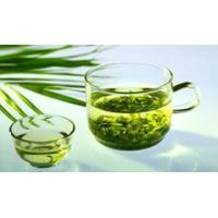 Standard extract green tea extract