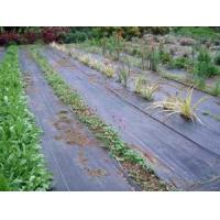 Quality Ground Cover Net wholesale