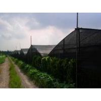 Quality insect proof net for greenhouse wholesale