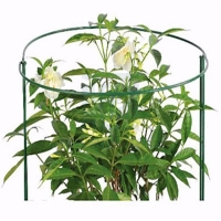 Quality Bow Style Plant Support wholesale